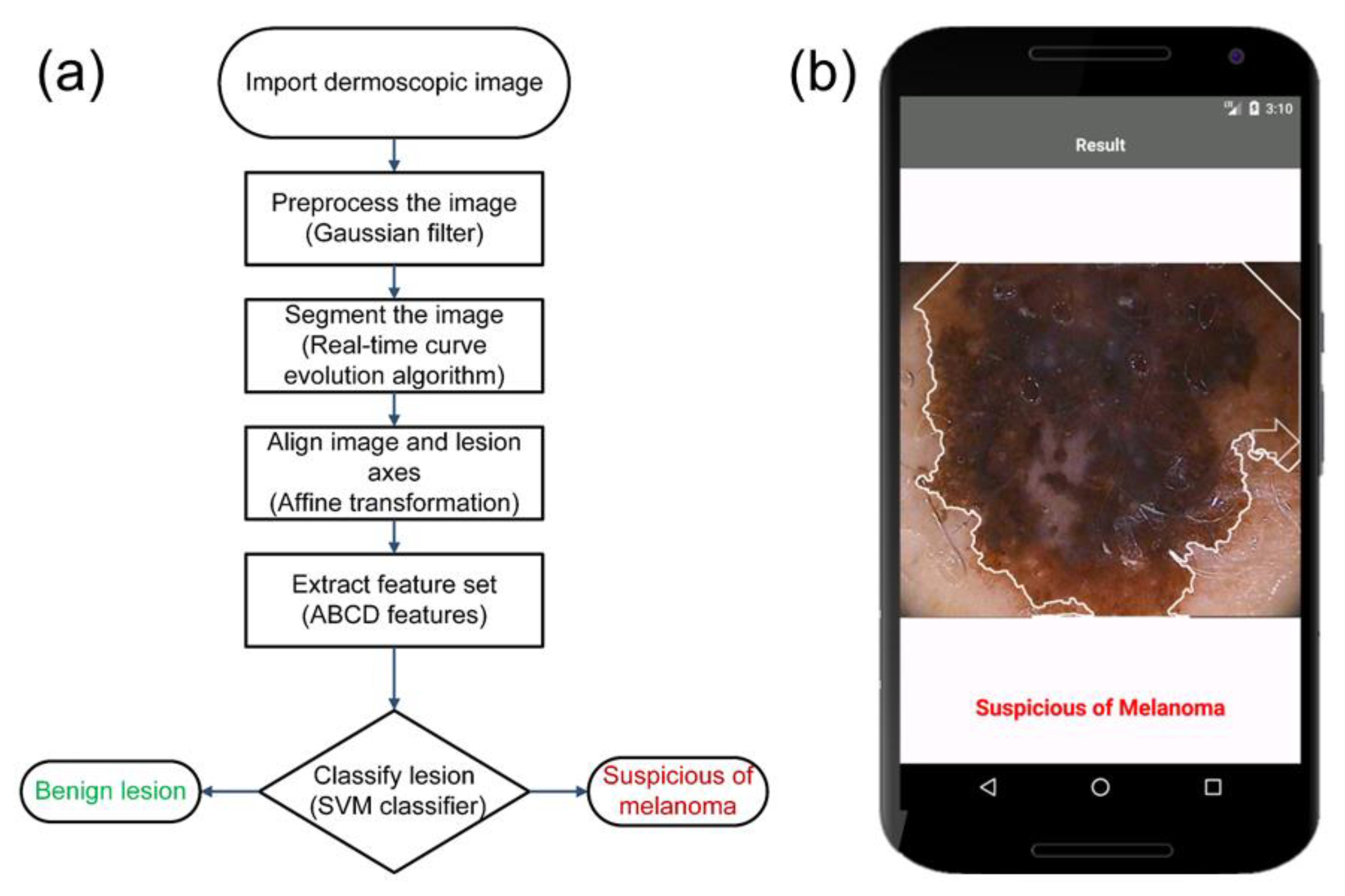 Symmetry Free Full Text Skin Cancer Diagnostics With An All Inclusive Smartphone Application Html