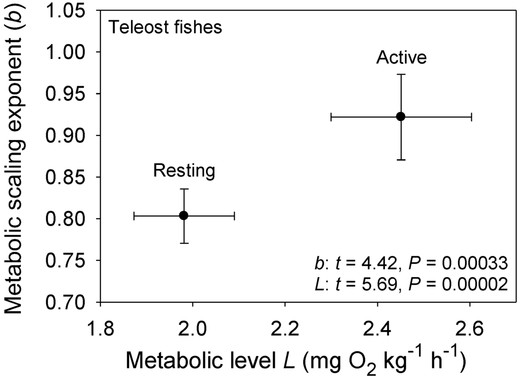 scaling of metabolic rate Extensive study of animal energetics has demonstrated that smaller immature animals tend to have higher body mass-specific metabolic rates than larger.