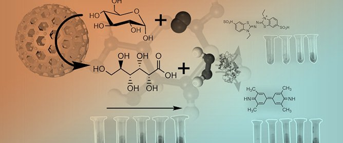 Gold-Silica Hybrids as Nanozymes for Glucose Oxidation
