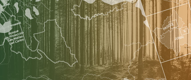 Aiming for Sustainability and Scalability: Community Engagement in Forest Payment Schemes