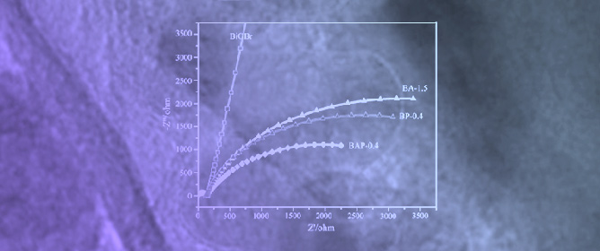 Recent Developments about Conductive Polymer Based Composite Photocatalysts
