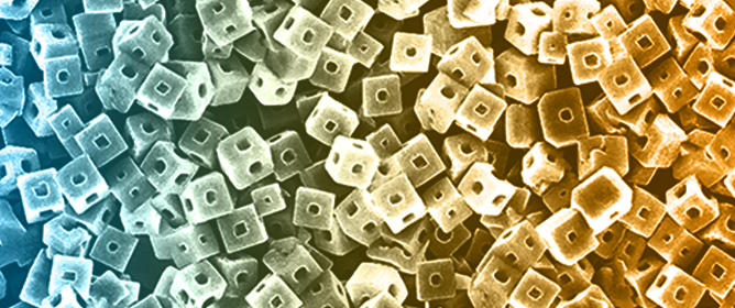 Fullerene Nanoarchitectonics with Shape-Shifting