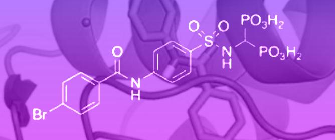 Bone-Seeking Matrix Metalloproteinase Inhibitors