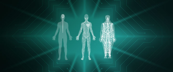 The Autonomic Nervous System Differentiates between Levels of Motor Intent and End Effector