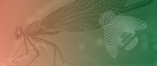 WingMesh: A Matlab-Based Application for Finite Element Modeling of Insect Wings