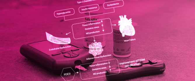 PDE5 Inhibitors in Type 2 Diabetes Cardiovascular Complications