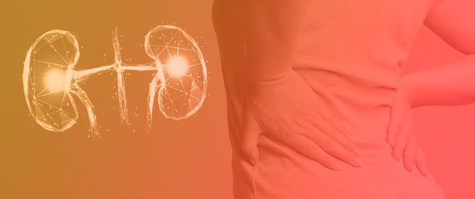 Therapeutic Strategies for Diabetic Kidney Disease
