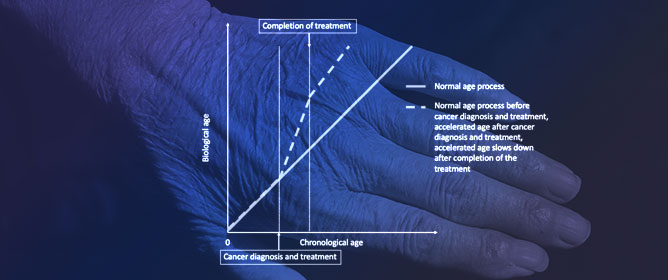 Cancer Treatment-Induced Accelerated Aging in Cancer Survivors: Biology and Assessment