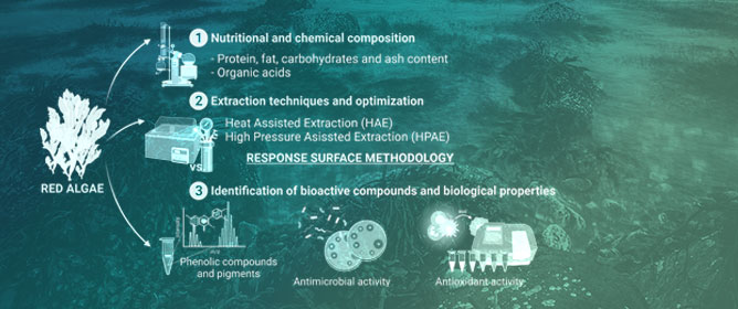 Red Seaweeds as a Source of Nutrients and Bioactive Compounds: Optimization of the Extraction