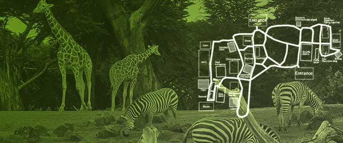 Exploring the Impact of Educational Quizzes and Stamp Collecting Trails on Zoo Visitor Learning and Exhibit Observation