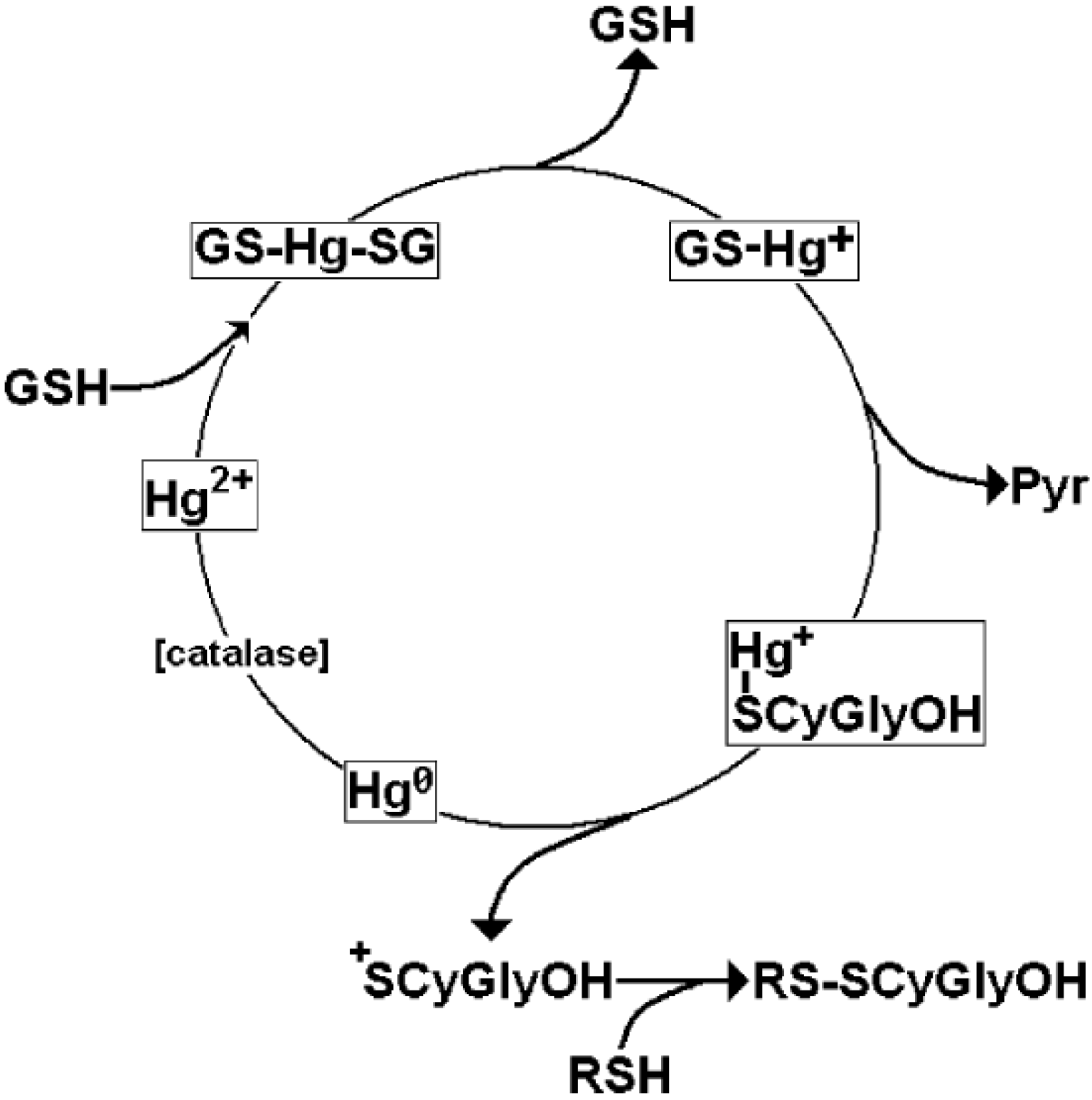 Toxicity Of Glutathione-Binding