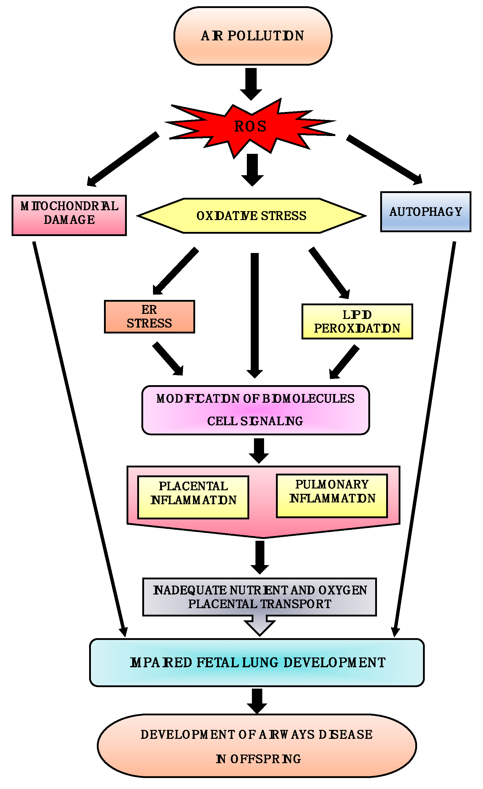 Toxics | Free Full-Text | Impact of Maternal Air Pollution