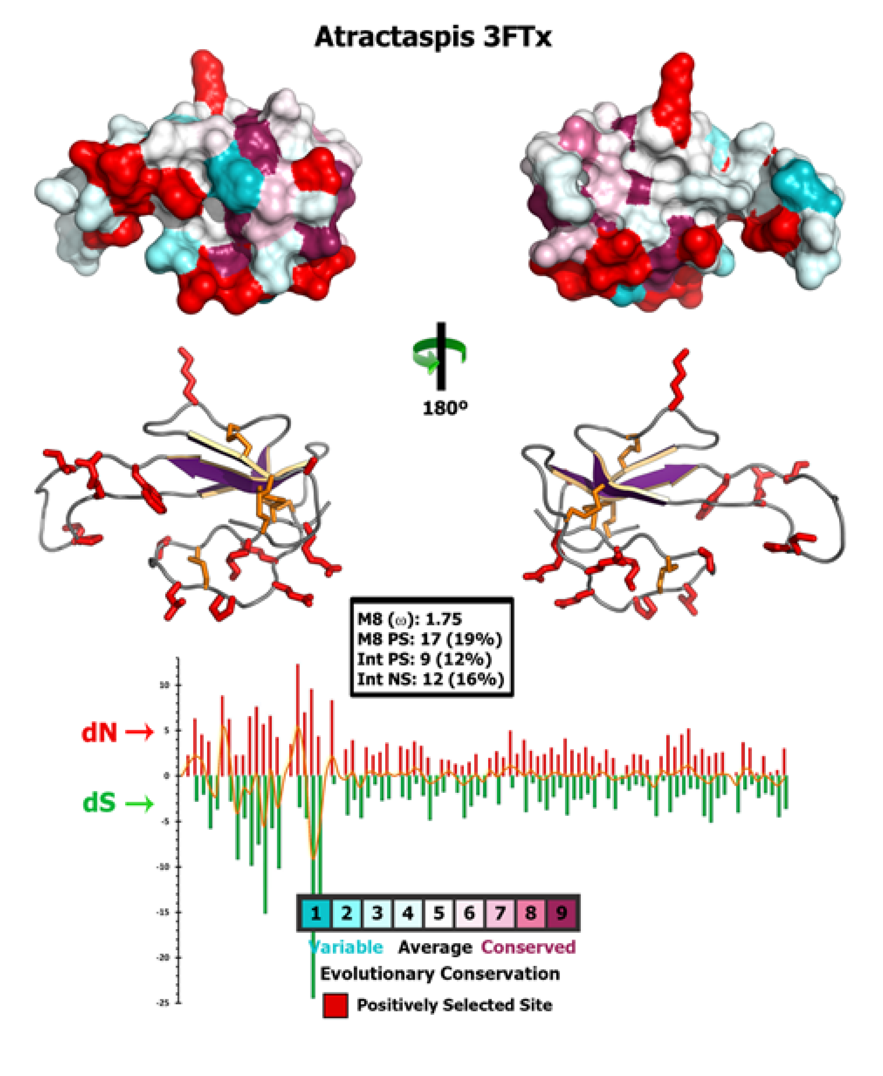 an analysis of positive darwinian selection on proteins The divergence of female reproductive proteins has never been  here we  present an analysis suggesting that positive darwinian selection promotes the.