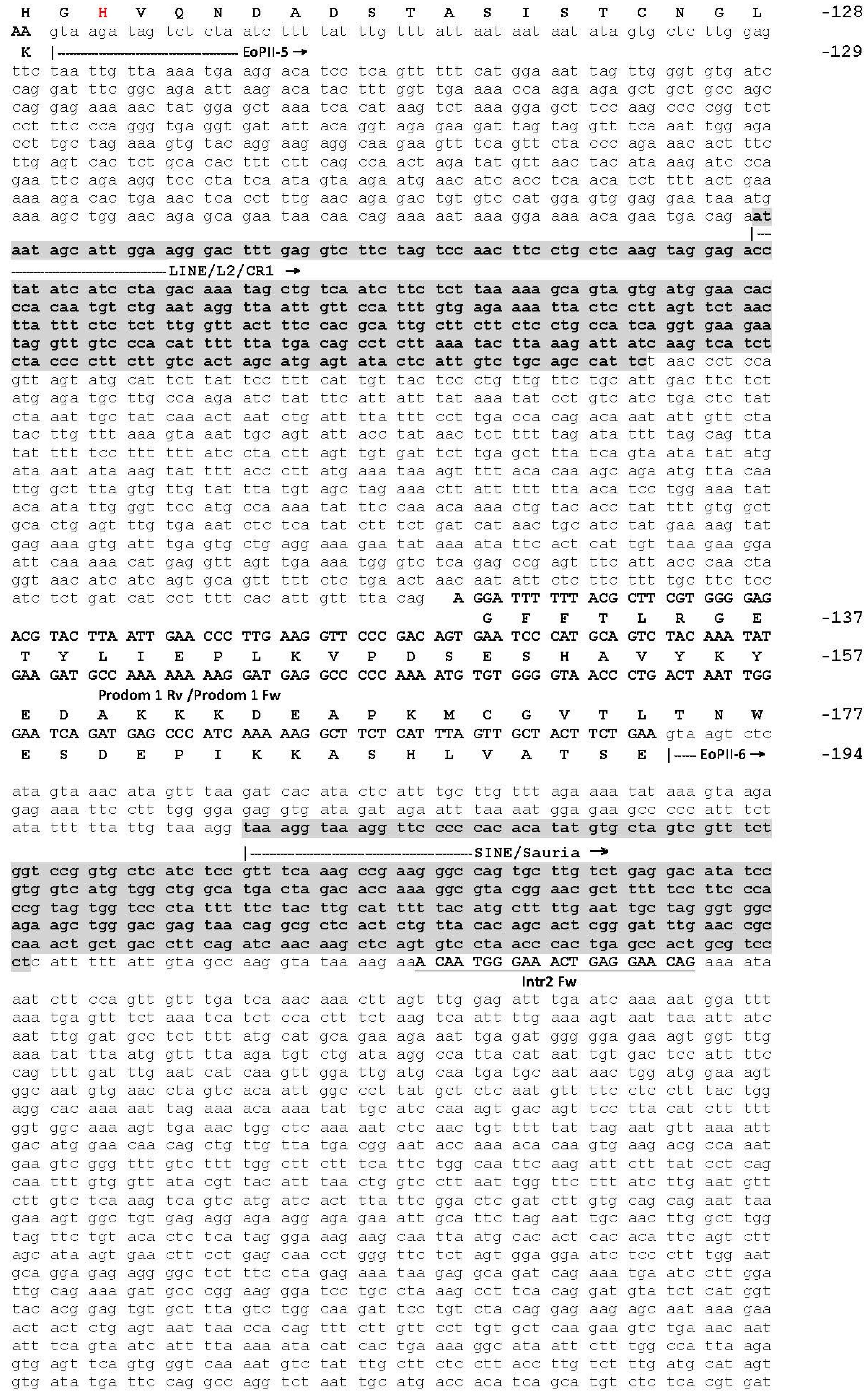 complimentary strand to cgt ctc ttc gga cac Name that gene  objective: in this ccg cgg ccc gga gtc ctc ctg ctc ctg ctg tcc atc ctc cac ttg aat agt atc aga ttc caa atc t gene sequence 5 atg cgt cga.
