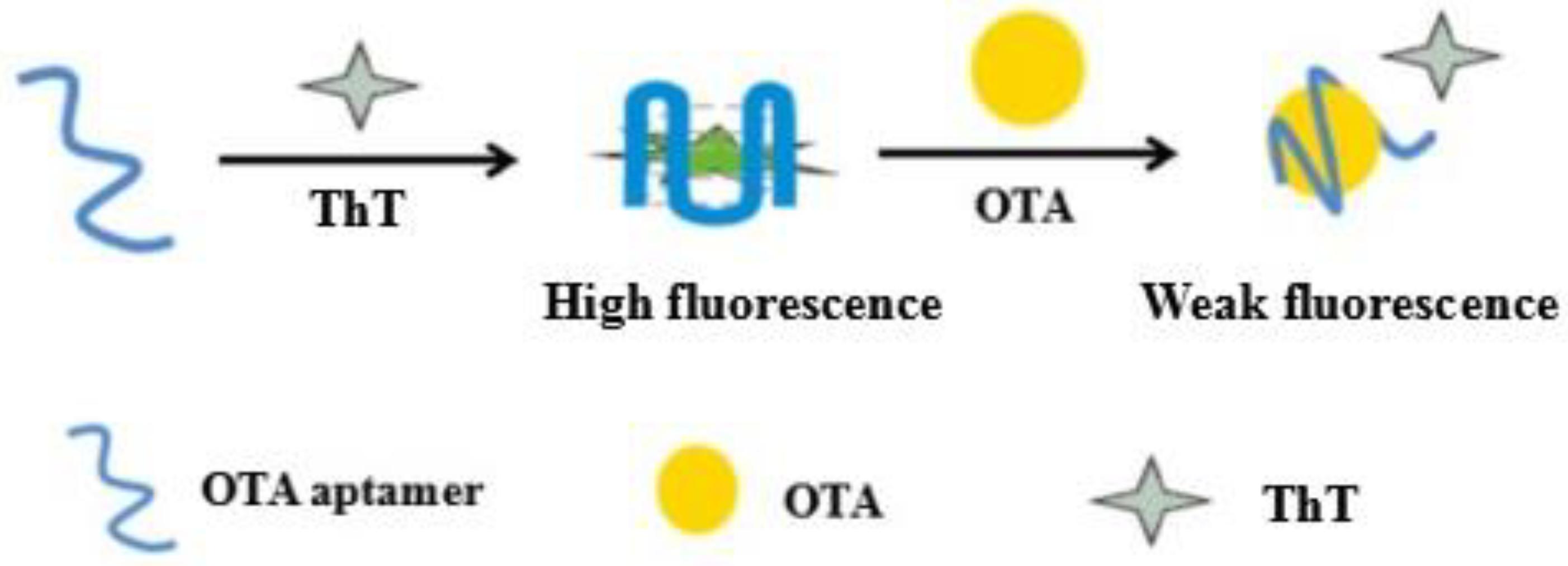 Toxins   Free Full-Text   Label-Free G-Quadruplex Aptamer