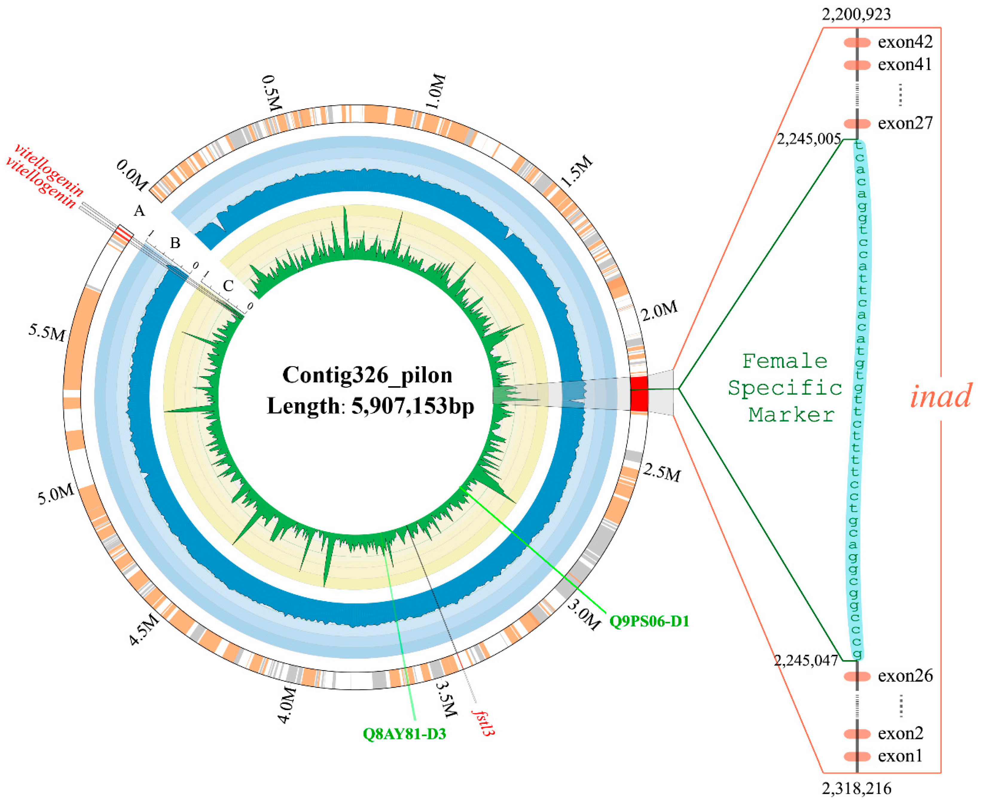 Toxins   Free Full-Text   Whole-Genome Sequencing of Chinese Yellow