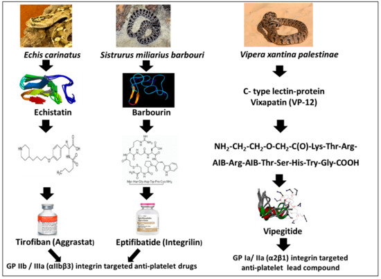Toxins | Free Full-Text | From Snake Venom's Disintegrins