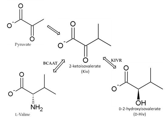Toxins 12 00765 g005 550