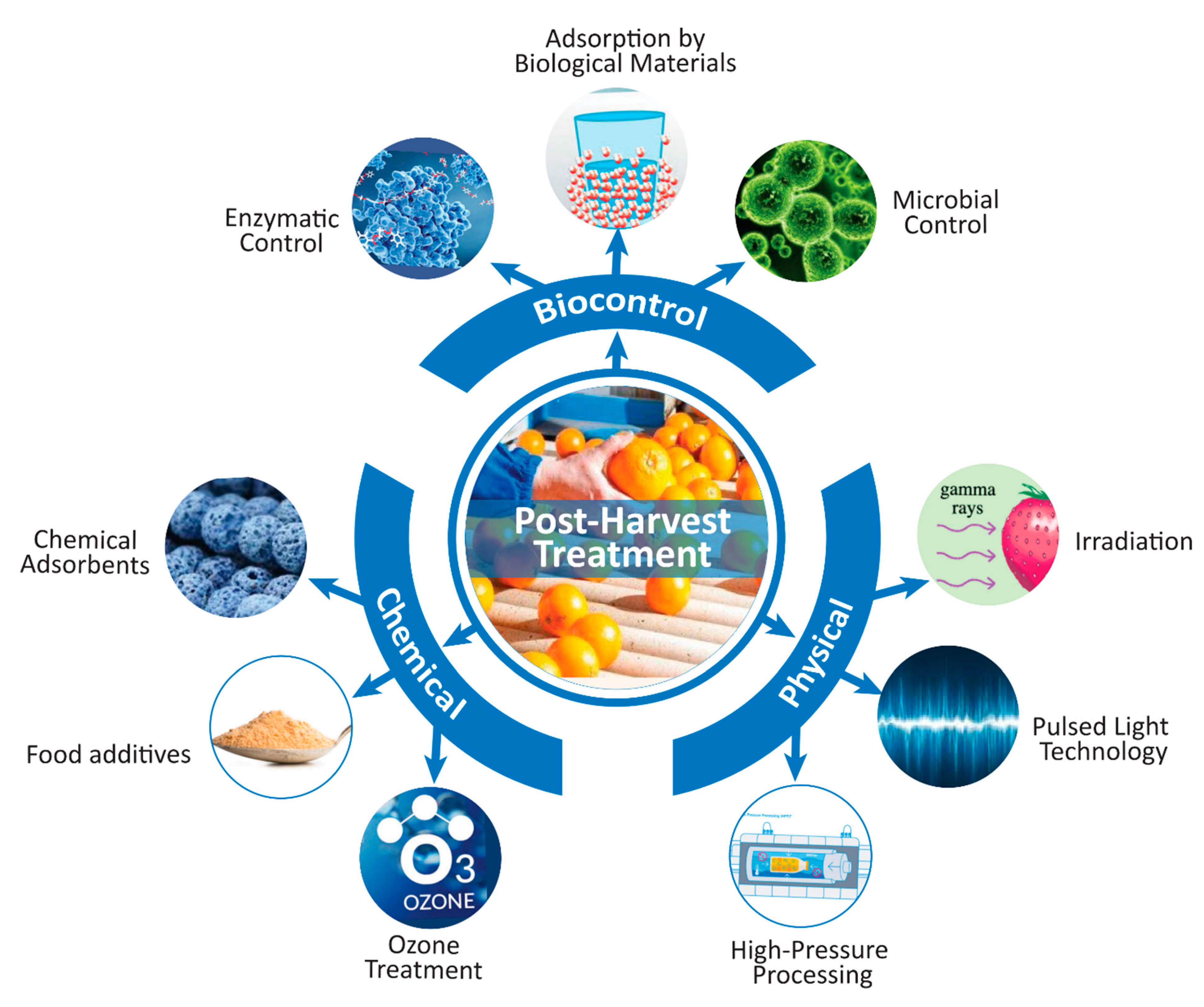 importance of mycotoxins in food industry)