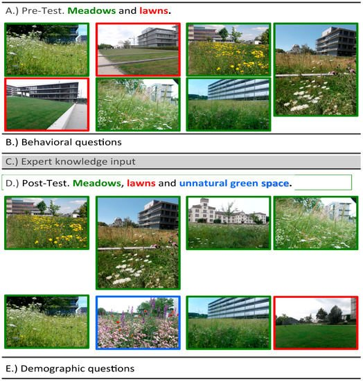 Urban Science Free Full Text Urban Nature Perception and