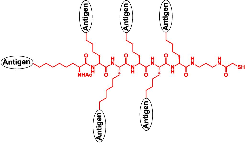 Imidazoquinoline synthesis essay