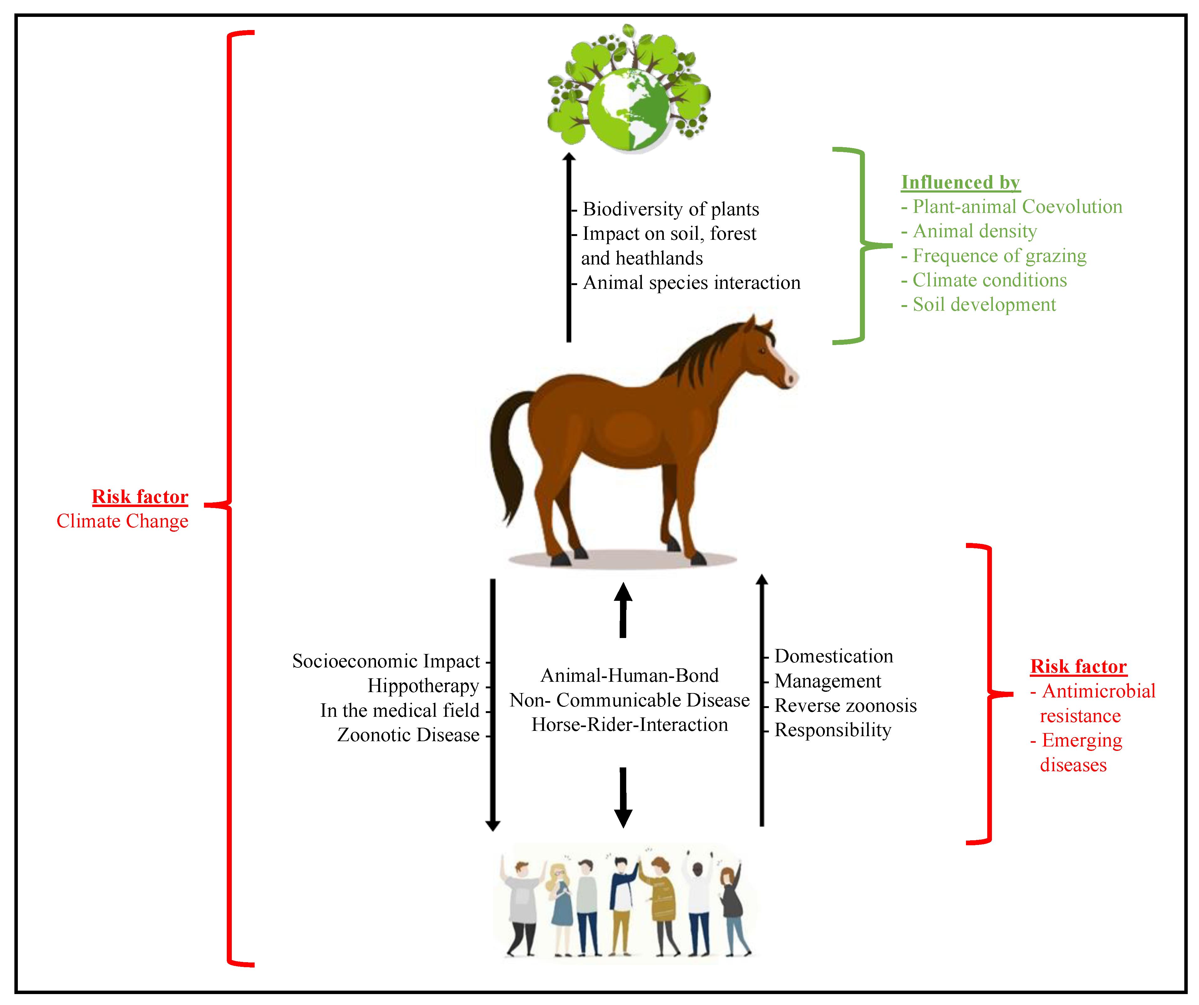 Ferdocat belsőleges gél A.U.V. Giardia in horses
