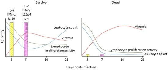 understanding severe phobias d.g richardson pdf