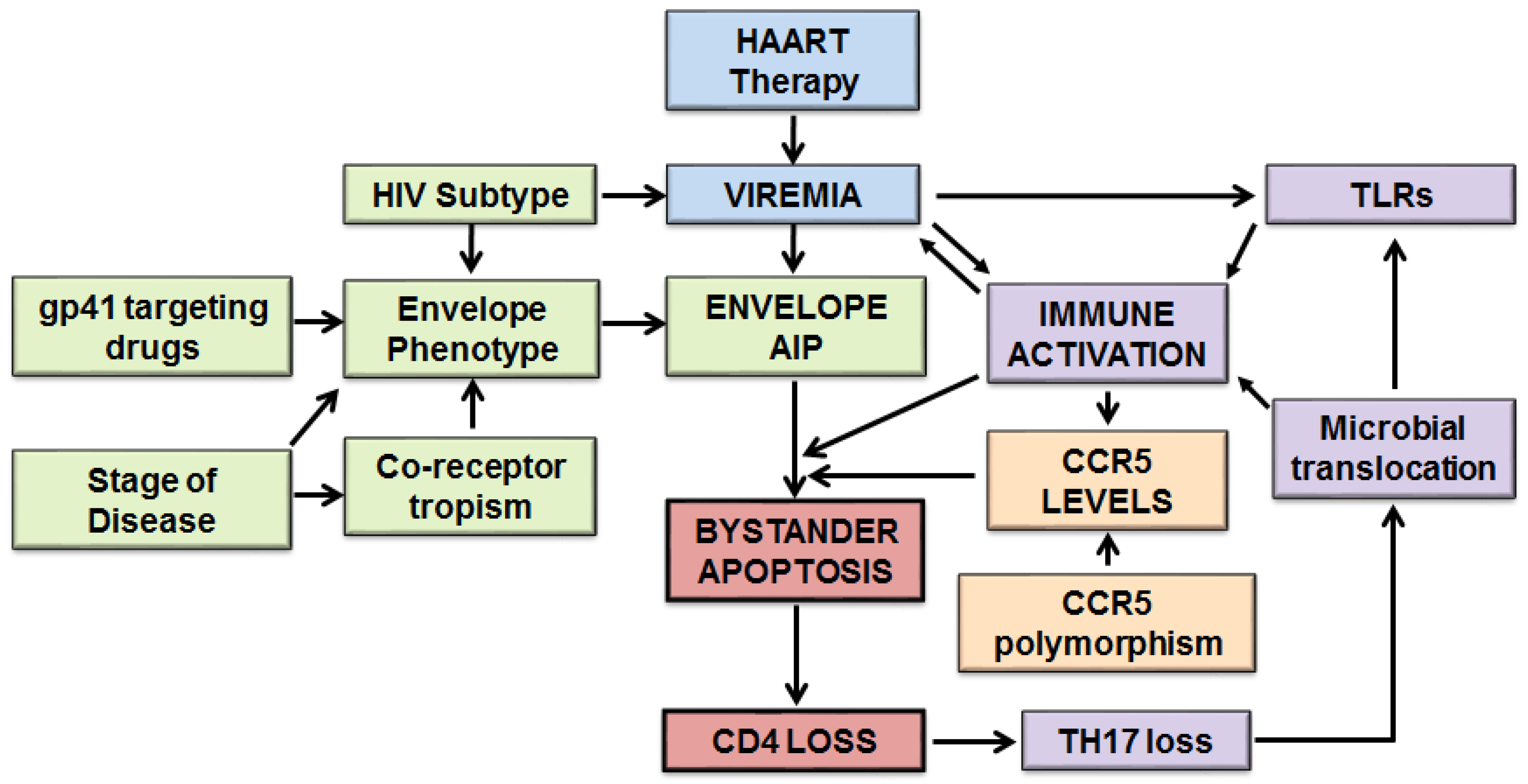 Viruses Free Full Text Host And Viral Factors In Hiv Mediated 1911assemblydiagram Bypassing The Series 80 Safety Components On 09 00237 G001