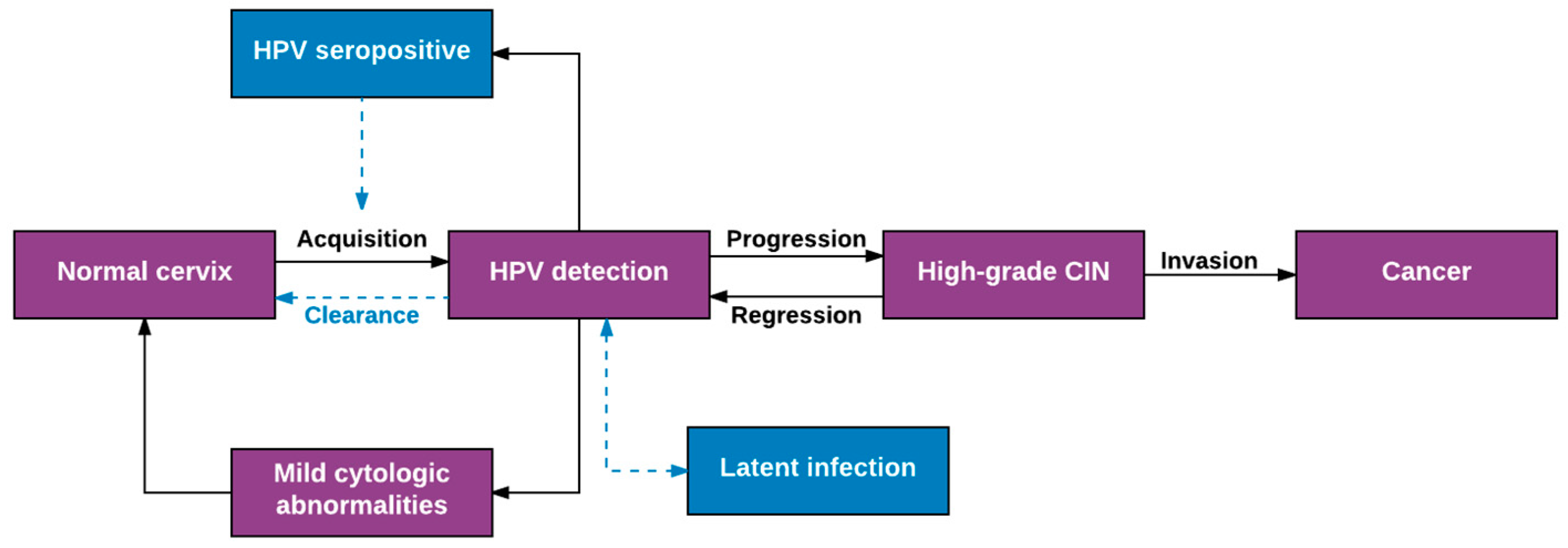 Viruses | Free Full-Text | Natural History of HPV Infection across the  Lifespan: Role of Viral Latency | HTML