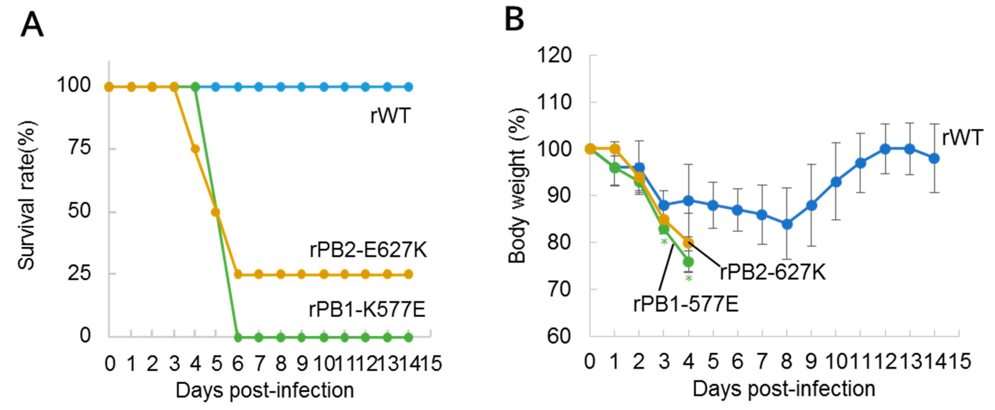 Viruses   Free Full-Text   A PB1-K577E Mutation in H9N2