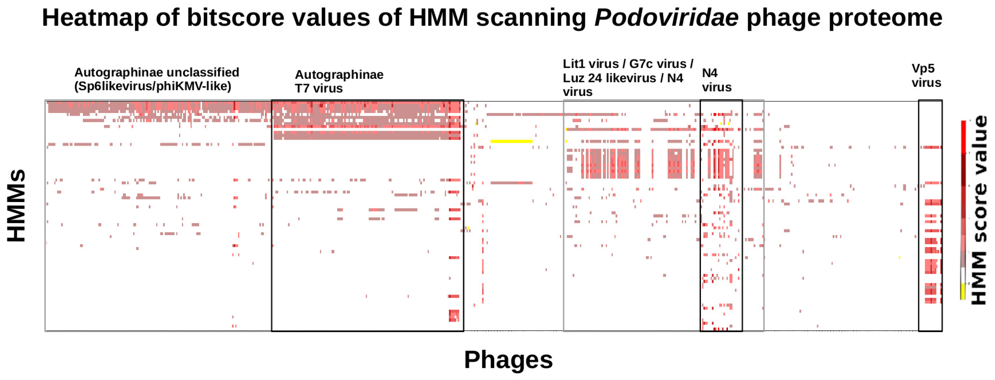 Viruses   Free Full-Text   Classifying the Unclassified: A Phage