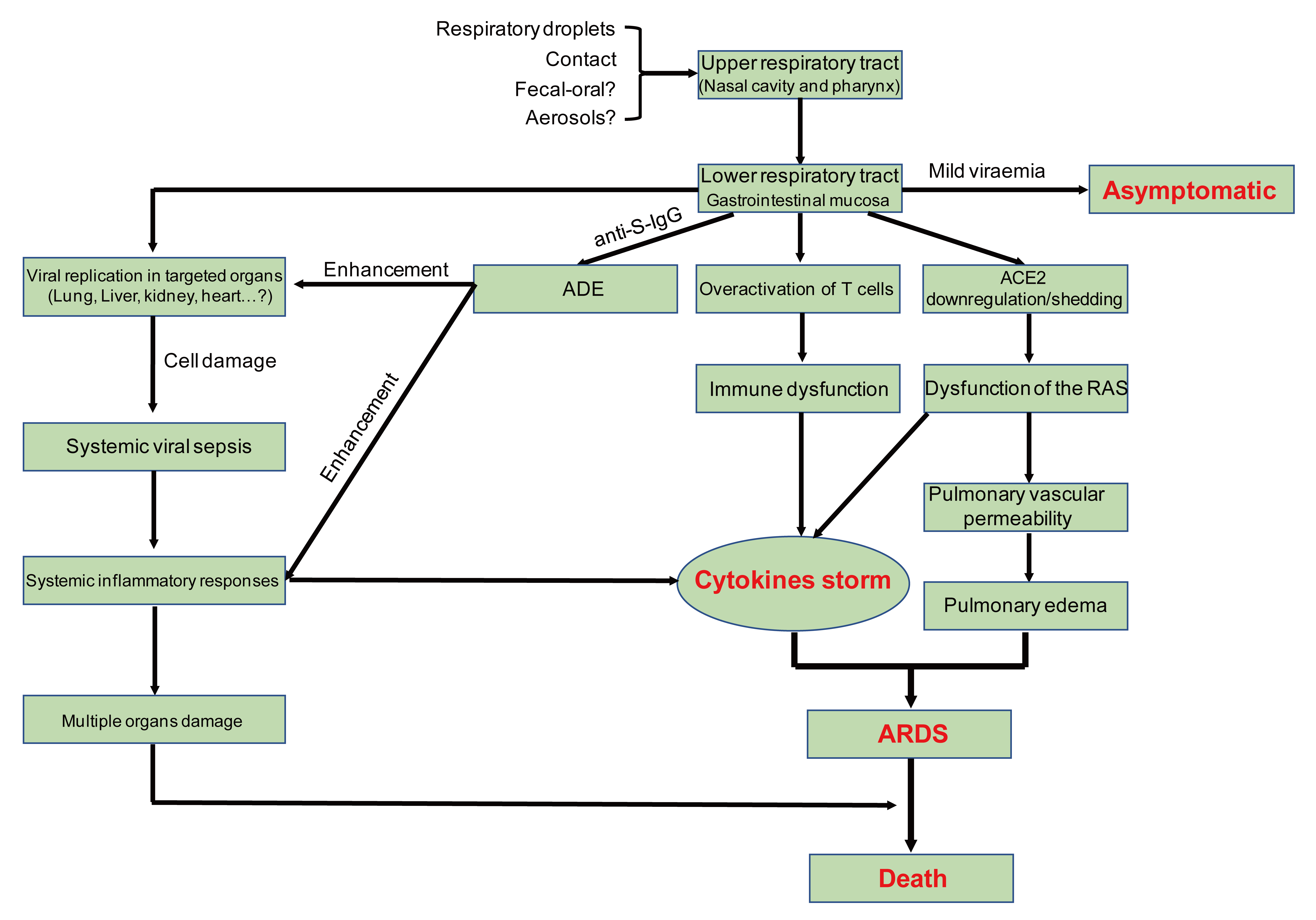 Virology, Epidemiology