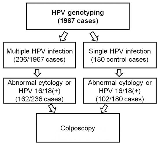 Papilloma virus prevention Human papillomavirus prevention infection