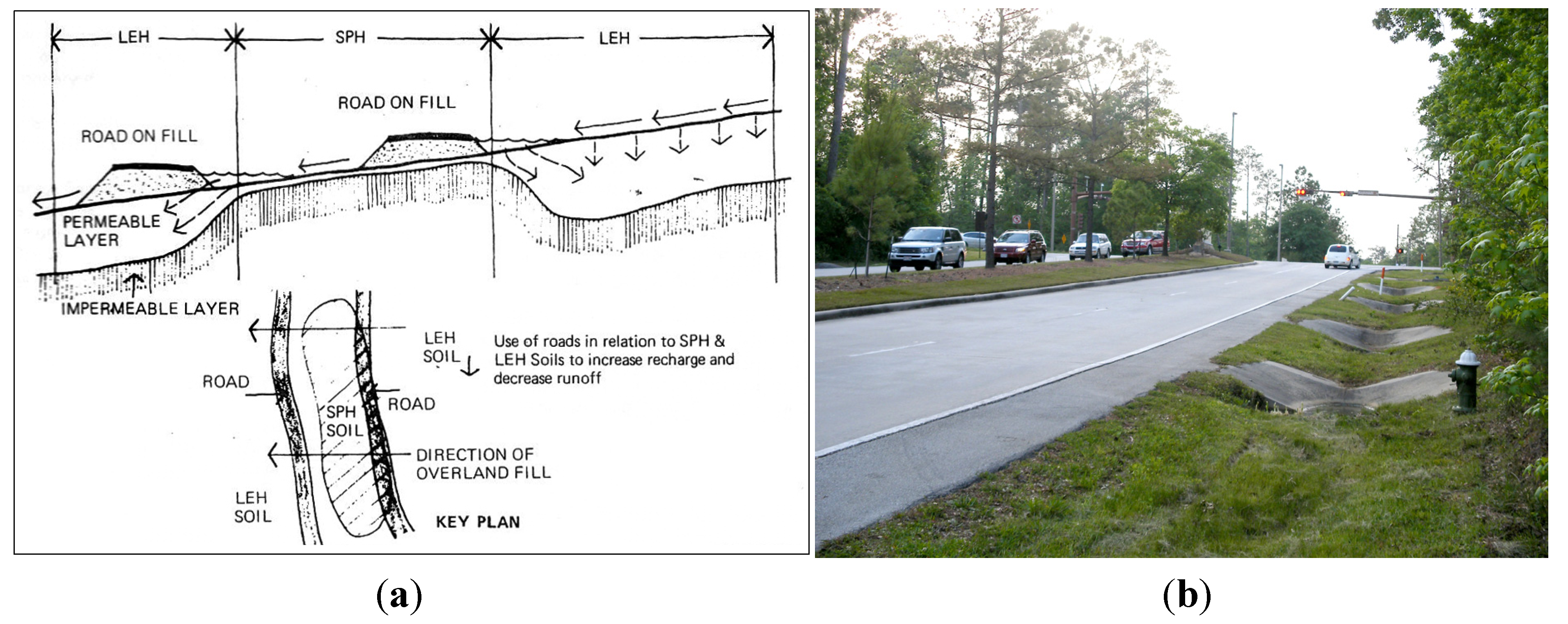 Water | Free Full-Text | Green Infrastructure Design for