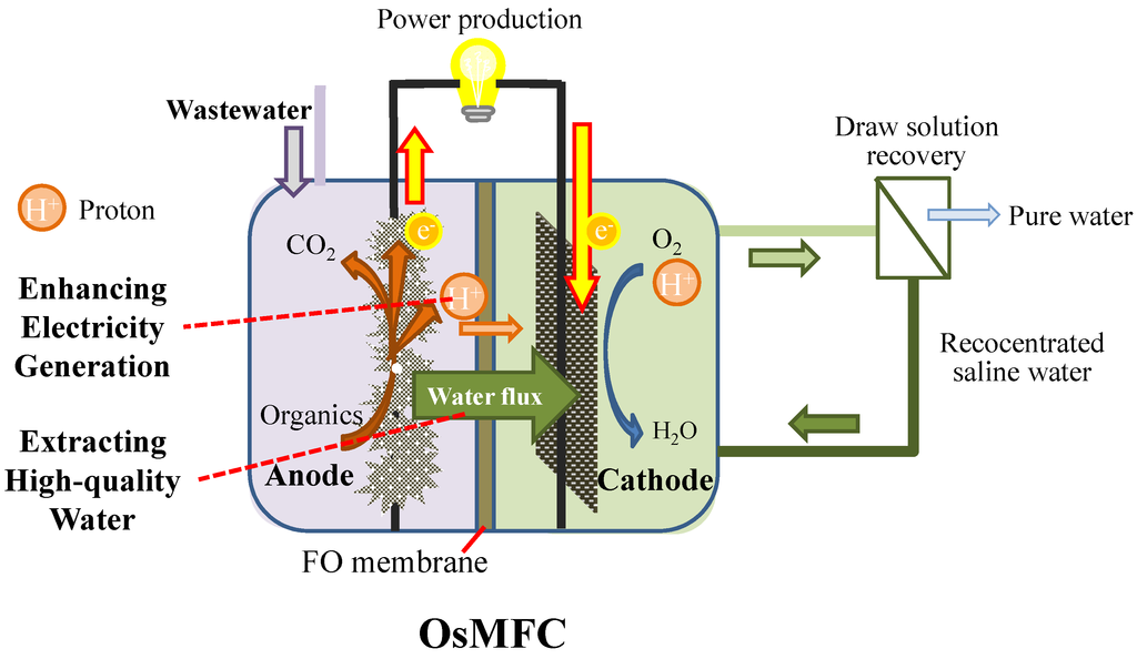 Fuel Cell Reactions >> Water | Free Full-Text | When Bioelectrochemical Systems Meet Forward Osmosis: Accomplishing ...