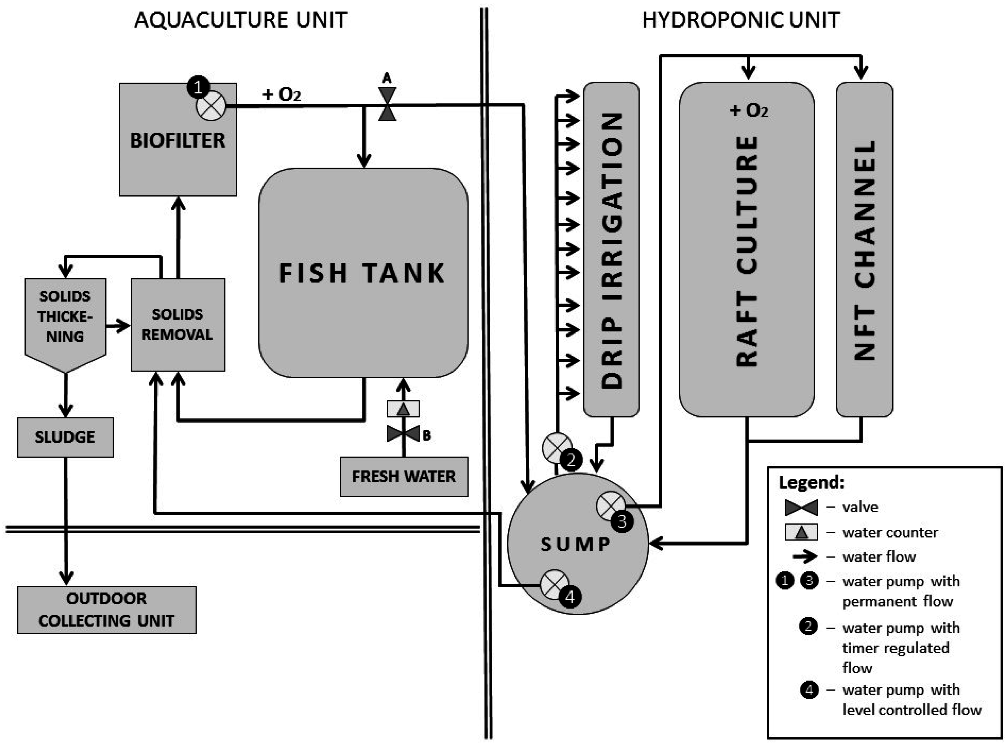 Water | Free Full-Text | Tomato Productivity and Quality in