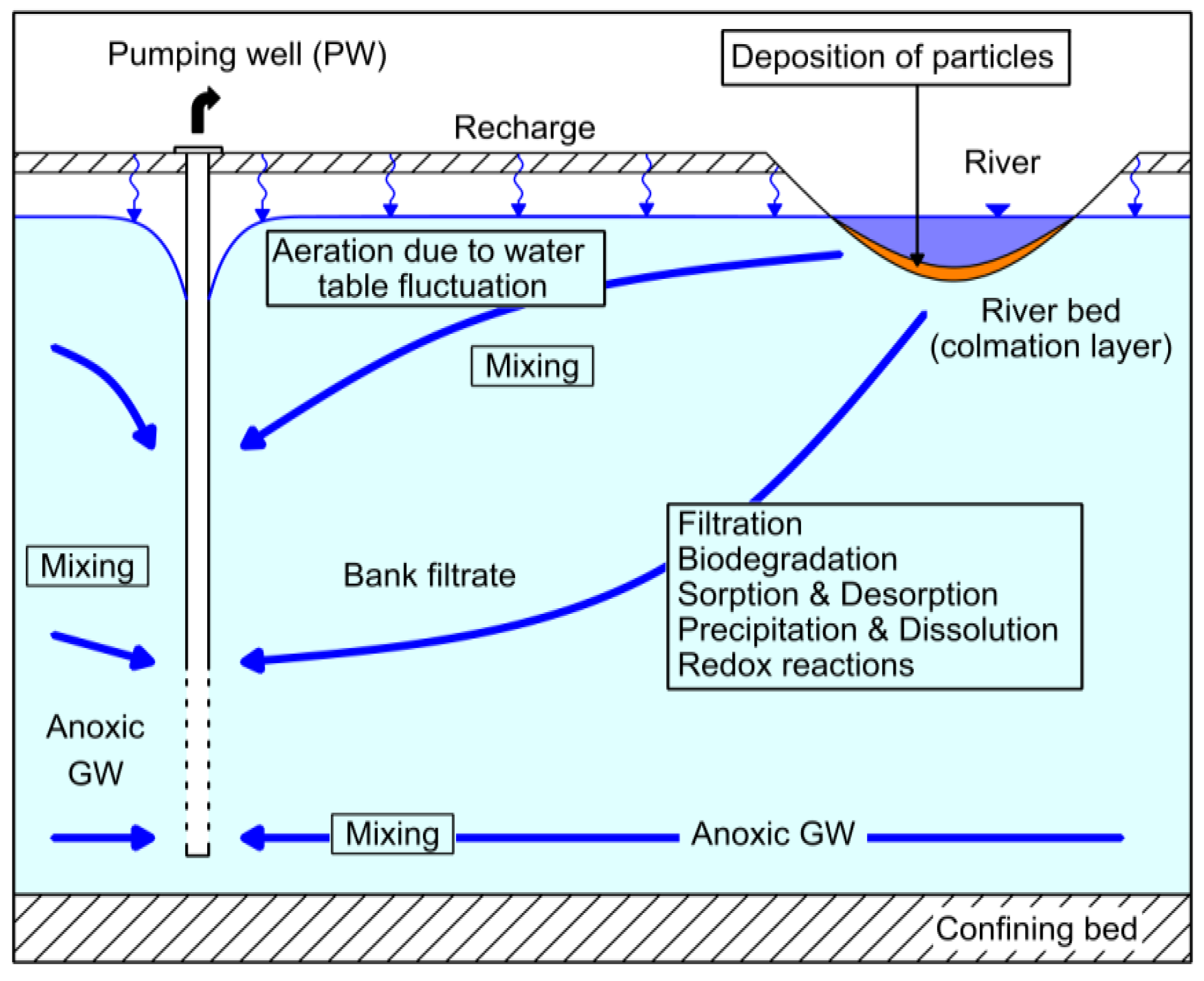 riverbank filtration thesis