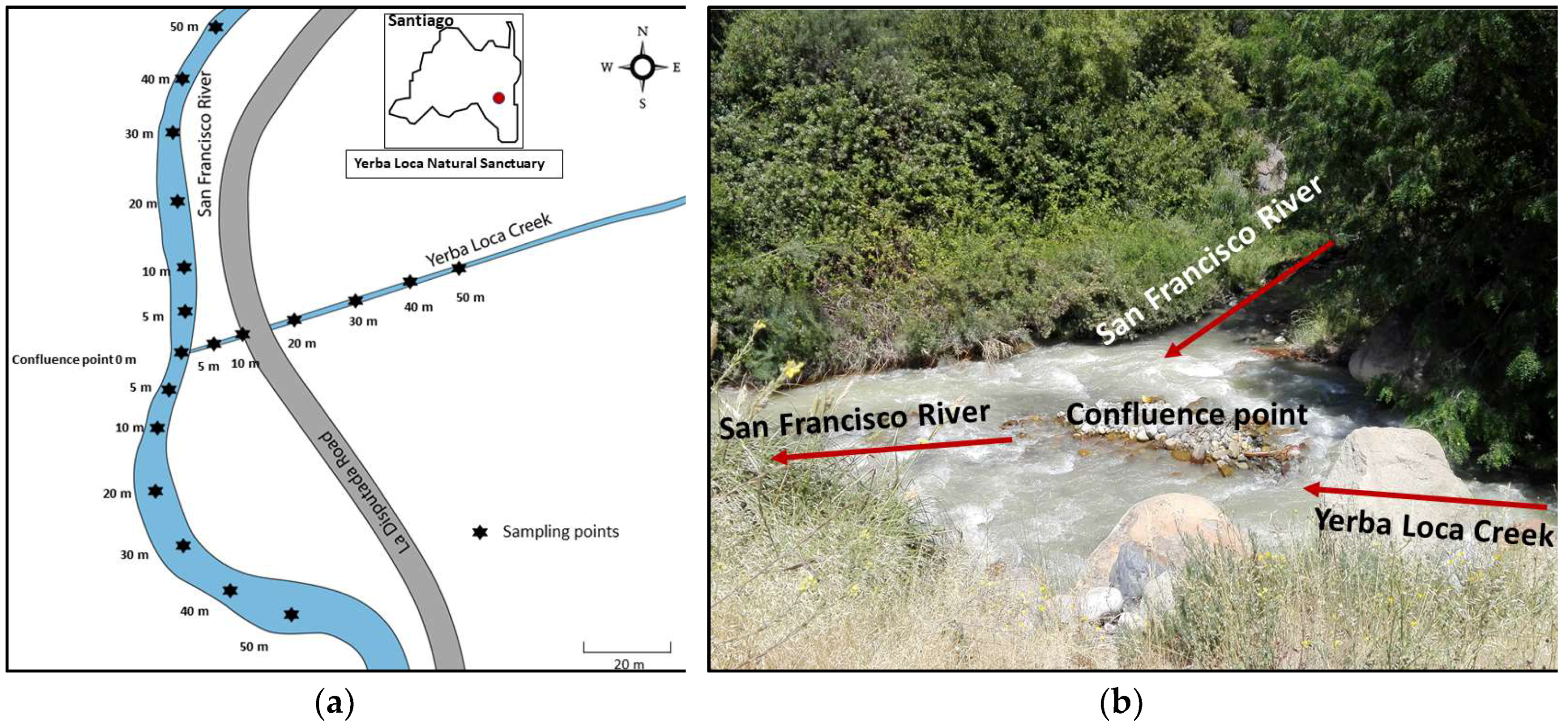 Water | Free Full-Text | Occurrence and Removal of Copper